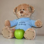 Boys Personalised Teddy Bear