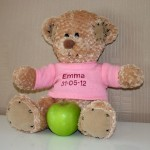 Girls Personalised Teddy Bear