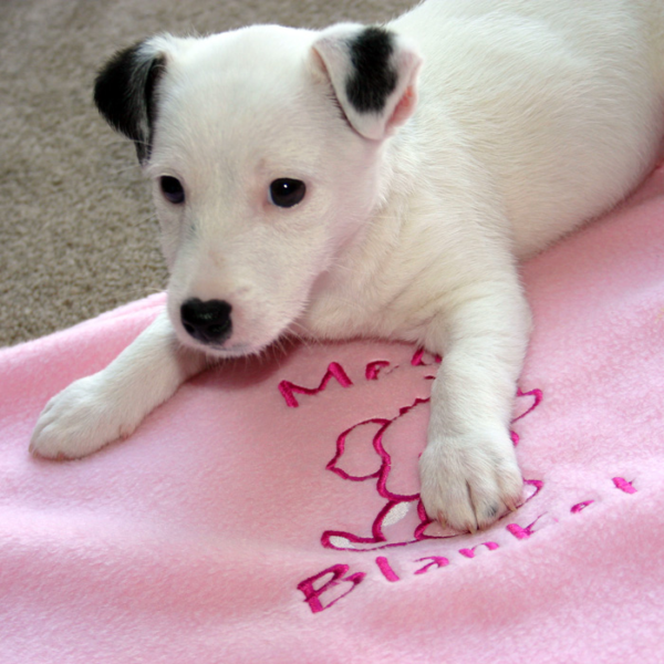 personalised-puppy-blanket